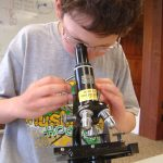 Photo of a boy looking through a microscope