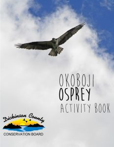 Graphic of the activity book cover